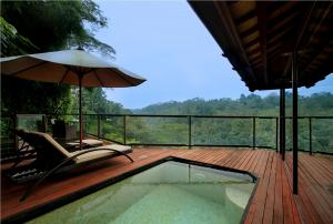 Ayung-View-Villa---Pool-1
